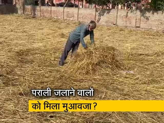 Videos : किसानों ने पराली भी जलाई, अब मुआवजा भी चाहिए