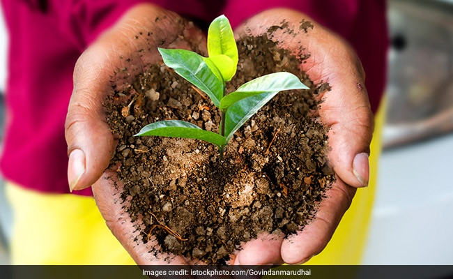 Organic Agriculture University To Come Up In Goa Soon