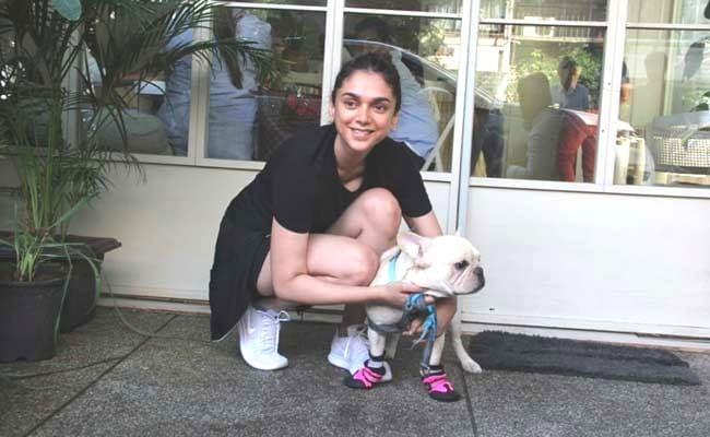 Like Aditi Rao Hydari, Dress Up Your Pet In Adorable Dog Boots