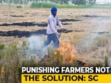 "Video : ""Time To Punish Officers"": Top Court Raps States Over Stubble-Burning"