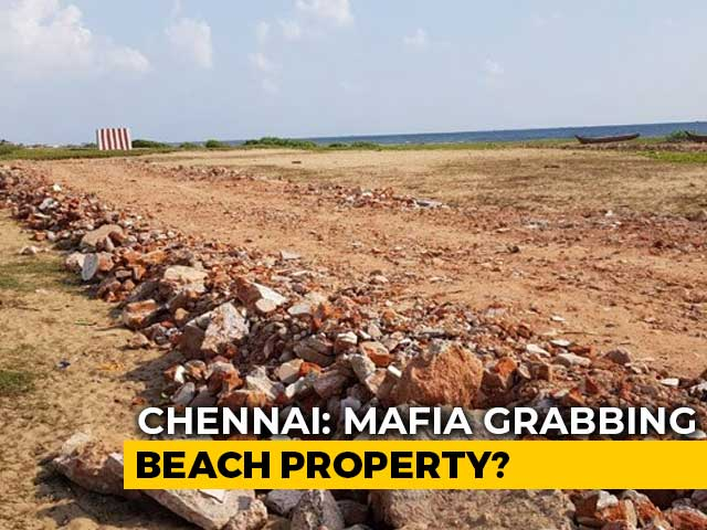 Video : In Row Over Fishing Settlement, Chennai May Lose Beach Where Turtles Nest