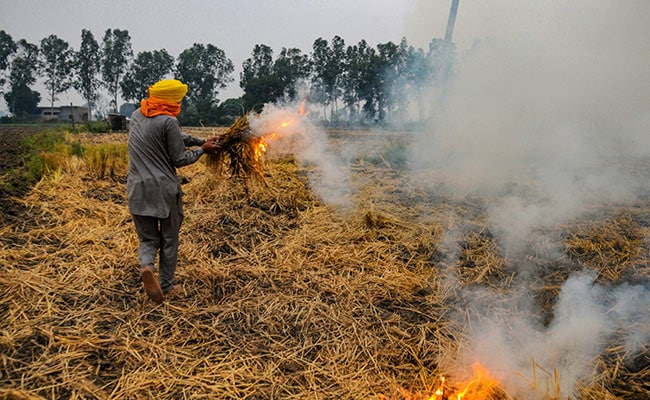 Supreme Court's Big Move On Stubble Burning, Declines Centre's Request - NDTV