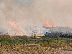 Supreme Court's Big Move On Stubble Burning, Declines Centre's Request