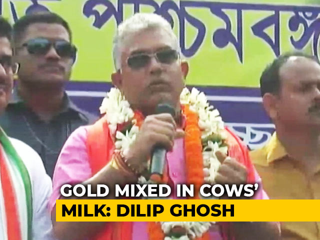 Video : West Bengal's BJP Chief: Cows Produce Gold