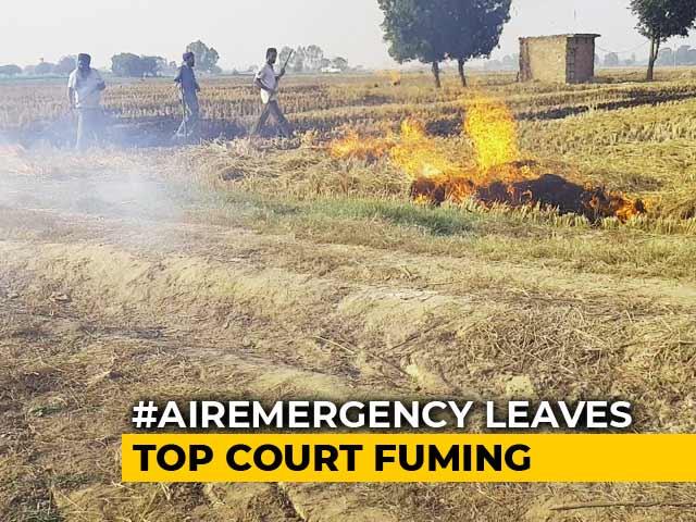 Video : Extinguish Stubble Fires, Supreme Court Tells Punjab, Haryana