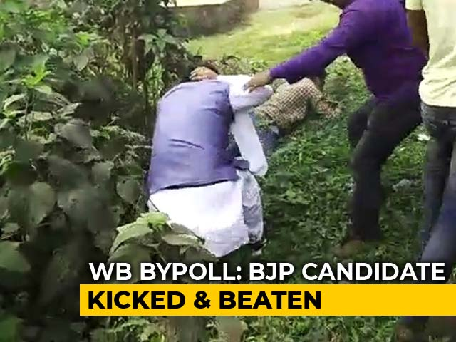 Video : On Camera, BJP Candidate Kicked Into Bushes As Bengal Votes For 3 Bypolls