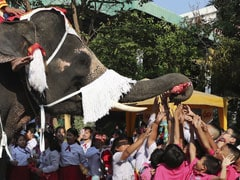 Elephants Dressed As Santa Claus Deliver Gifts To Schoolchildren