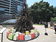 """Burnt Christmas Tree"" Is A Perfect Symbol Of Australia's Devastating Bushfires"