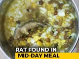 Video : Mouse Found In Mid-Day Meal Served To Students In UP School