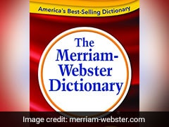This Nonbinary Pronoun Is Merriam-Webster Word Of Year