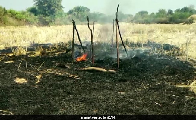 3 Girls Charred To Death After Haystack Catches Fire In Odisha