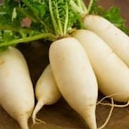 Winter Diet: 5 Interesting Ways To Eat More Radish This Winter