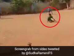 बच्चे के क्रिकेट स्टाइल के 'फैन' हुए सचिन तेंदुलकर, Video ट्वीट कर बोले- '2020 की शुरुआत...'