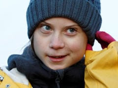 """Wouldn't Have Wasted Time"": Greta Thunberg Over Talking To Trump At UN Summit"