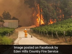 ऑस्ट्रेलिया में जानबूझ कर आग लगाने के लिए सैकड़ों लोग हुए गिरफ्तार