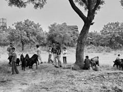 Bhopal Gas tragedy: 35 साल पहले की वो त्रासदी जिसने खत्म कर दी हजारों जिंदगियां