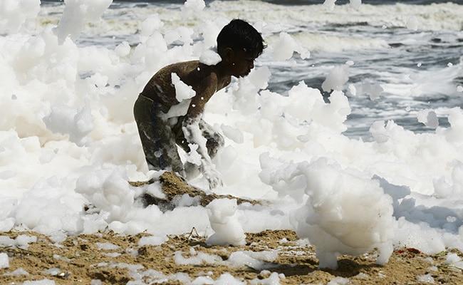 Toxic Foam Blankets Chennai's Marina Beach, Causes Pollution Hazard