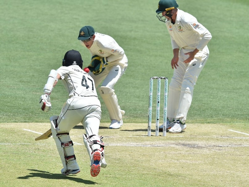 Australia Miss Easy Run-Out vs New Zealand After Tim Paine