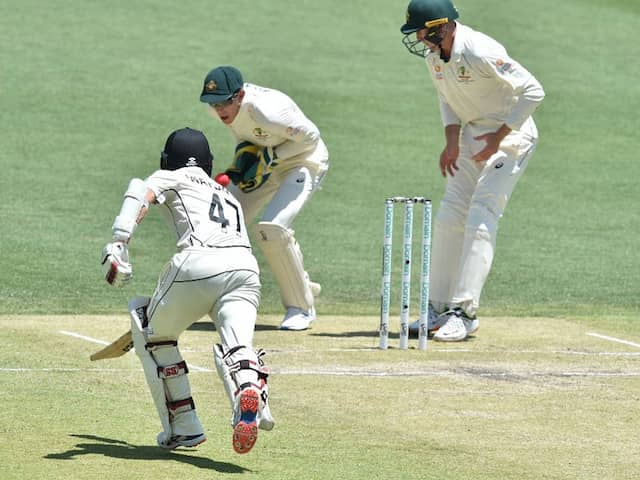 Australia Miss Easy Run-Out vs New Zealand After Tim Paines Embarrassing Blunder. Watch Video