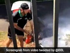 Watch: Glenn Maxwell Turns Firefighter, Stops Bushfire From Spreading Before BBL Match