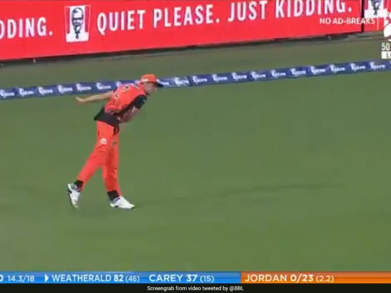 Watch: Jhye Richardson Pulls Off Sensational Run-Out By Bowling From Boundary Line