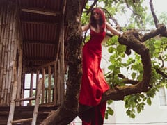 Ira Khan 'Always Wanted A Tree House' So She Did A Photoshoot On One