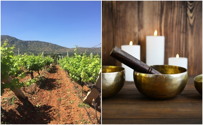 Finding Experiences In Bangalore: Vineyard Tour, Sound Healing And More