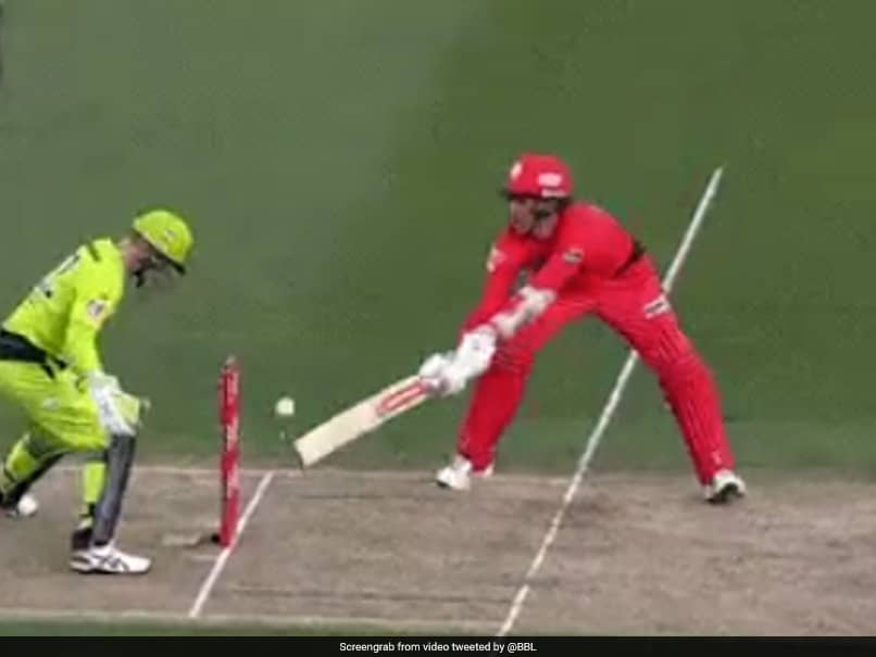 Big Bash League: Melbourne Renegades Batsman Tom Cooper Saves Wicket With Brilliant Game Awareness. Watch