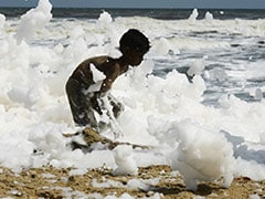 Toxic Foam Blankets Chennai's Marina Beach, Causes Pollution Hazard