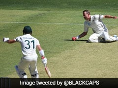 Australia vs New Zealand: Neil Wagner Takes Great Return Catch To Dismiss David Warner