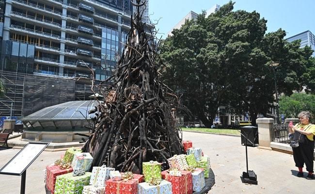 'Burnt Christmas Tree' Is A Perfect Symbol Of Australia's Devastating Bushfires
