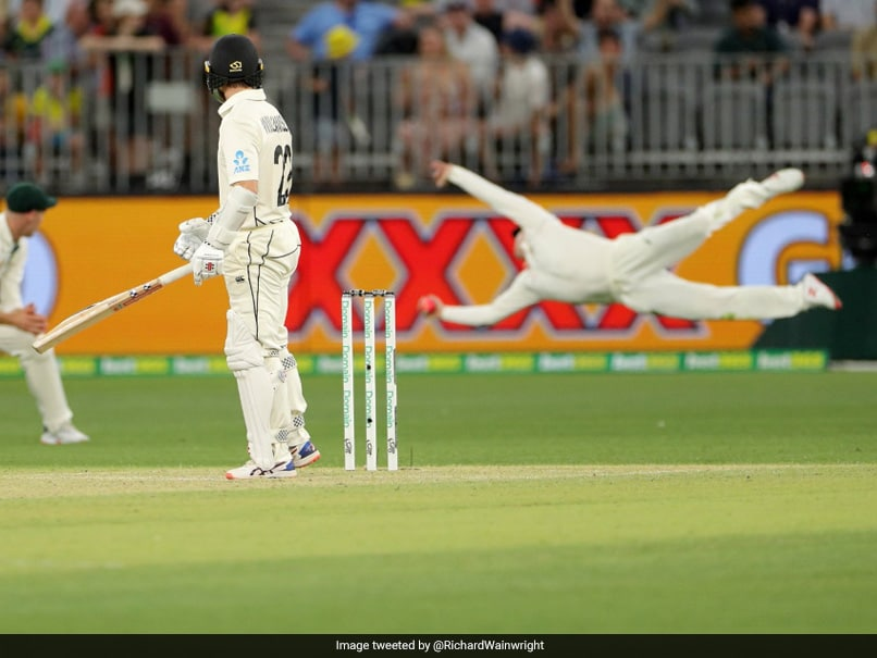 Australia vs New Zealand: Steve Smith Takes One Of The Best Catches Youll Ever See. Watch