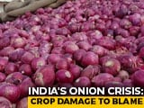 Video : As Onion Prices Touch Record Highs, Farmers Are Still Making Losses