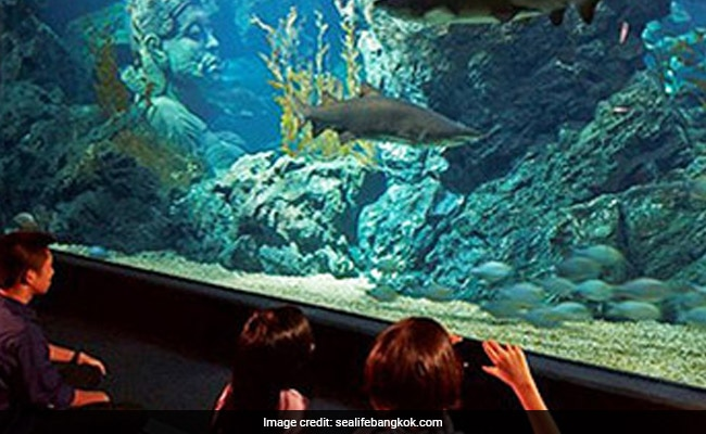 Thailand-Style Aquarium In Mumbai? Authorities Asked To Draft Proposal