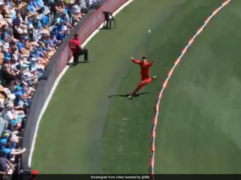 Watch: Australian Cricketer Makes Incredible Catch Look Terribly Simple In Big Bash League