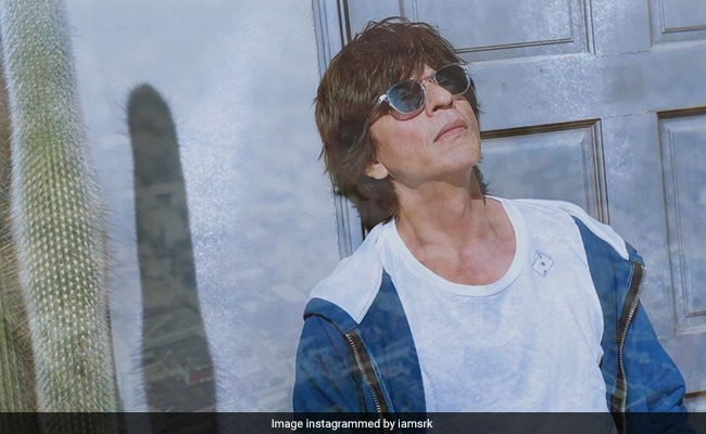 Shah Rukh Khan's Response To Fan Asking About Room Rent In Mannat. Mic Drop
