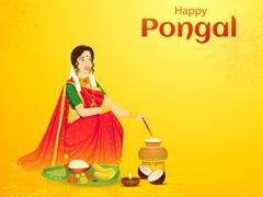 Pongal 2021: सूर्य उपासना का त्योहार है पोंगल, 4 दिनों तक ऐसे मनाया जाता है पोंगल का पर्व