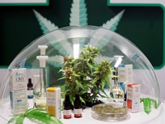 Thailand Opens First Cannabis Clinic Based On Traditional Medicine