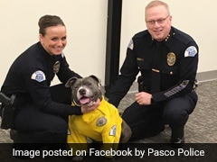 Terminally Ill Rescue Dog Made Honorary Police K-9 For A Day