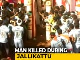 Video : In Tamil Nadu, Man Gored To Death At Bull-Taming Sport Jallikattu