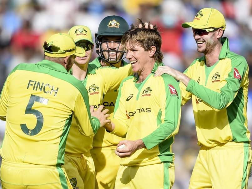 India vs Australia: Adam Zampa On What It Takes To Get The Better Of Virat Kohli