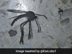 Viral Pic Of Giant Mosquito That Is Freaking Netizens Out