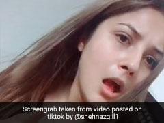 शहनाज गिल गुस्से में आईं नजर, बोलीं- आई एम नॉट गुड गर्ल, देखें Video