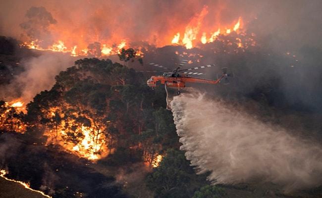 Australia Declares State Of Emergency As Bushfires Threaten Its Capital