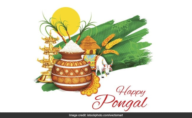 Pongal 2021: When Is Pongal? Date, Time And A Planned Menu For The Festive Fare (Recipes Inside)