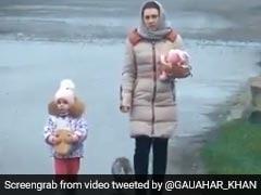 बच्चे के साथ चल रही थी महिला तभी पीछे से आई बिल्ली और किया ऐसा स्टंट, 40 लाख बार देखा गया Video