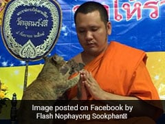 Friendly Cat Tests Buddhist Monk's Patience In This Heartwarming Video