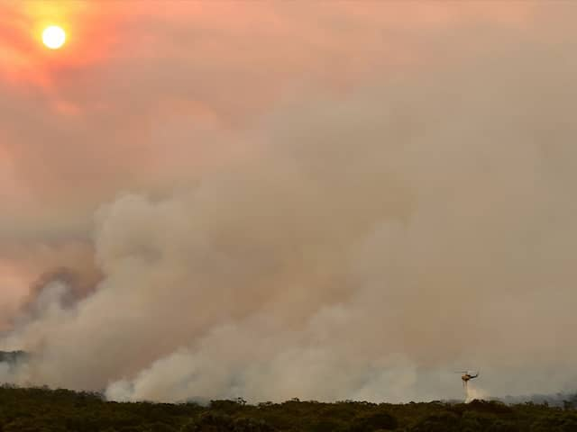 Bushfire Smoke Casts Doubt On Start Of Australian Open In Melbourne