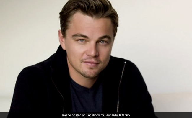Leonardo DiCaprio Helps Save Drowning Man During Caribbean Vacation