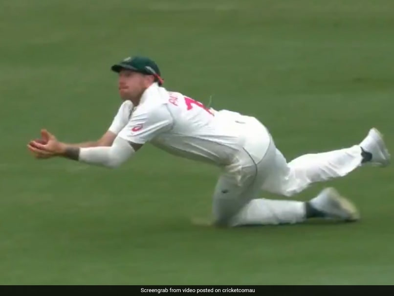 """What A Screamer"": James Pattinson Takes Spectacular Diving Catch To Dismiss Todd Astle"
